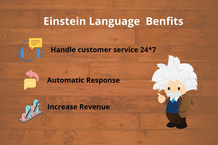 Benefits of Einstein Language
