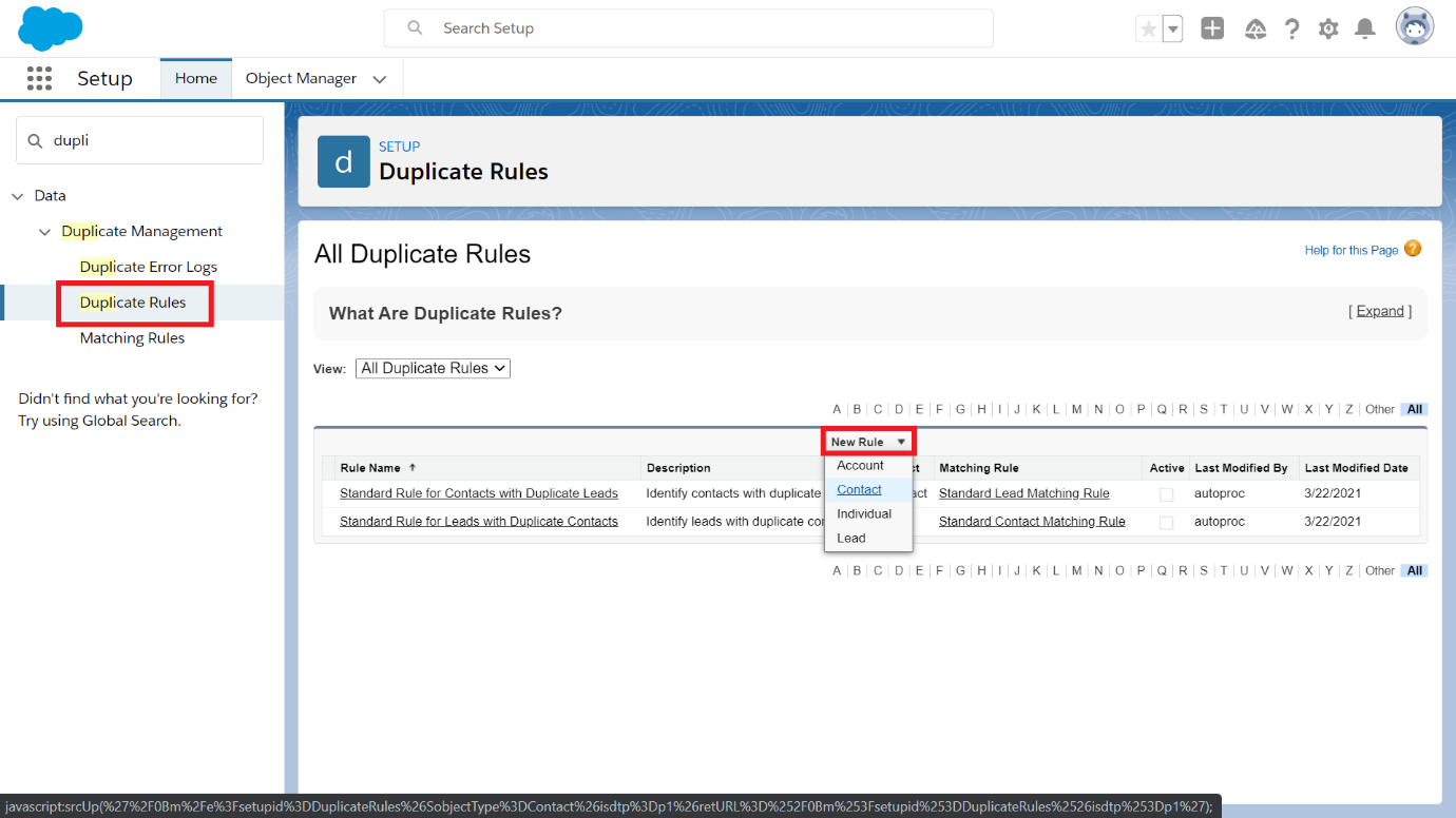 Choose contact for Duplicate Rules