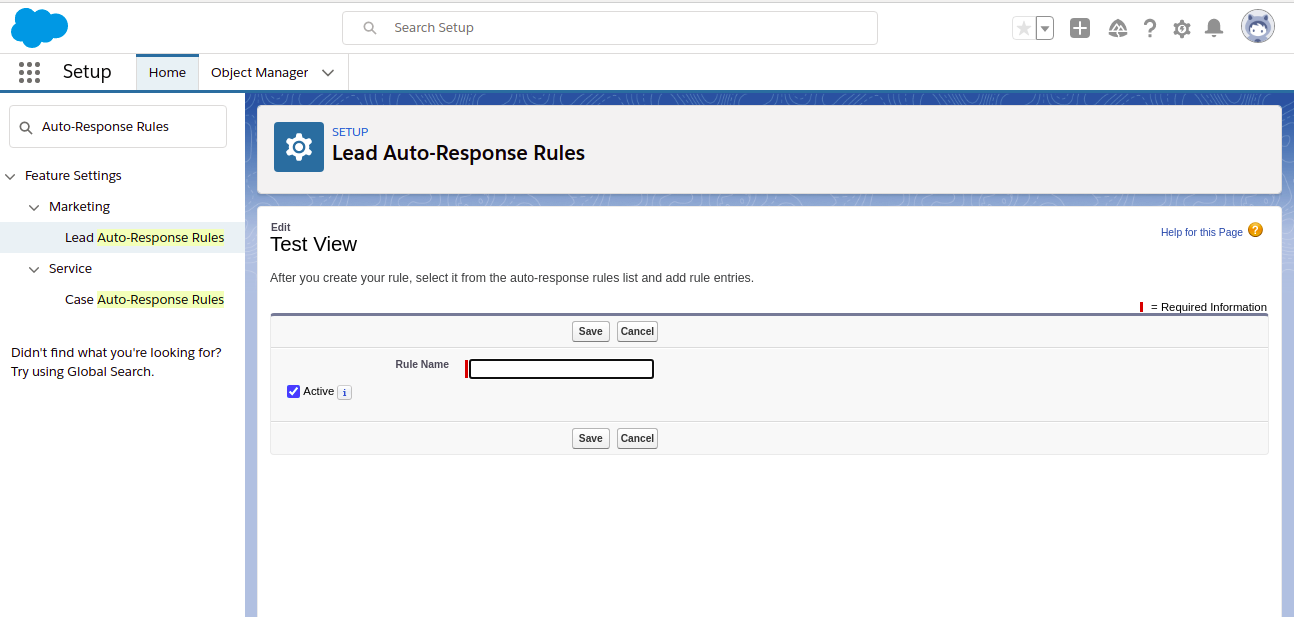 Enter the rule name for the auto-response rules